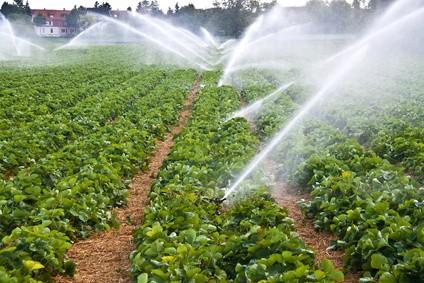 Irrigation groupe électrogène